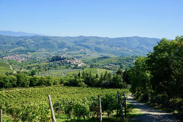 Montefioralle, Toskana