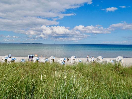 """Strandkörbe am Meer hinter der Strandkneipe """"Stranddüne"""""""
