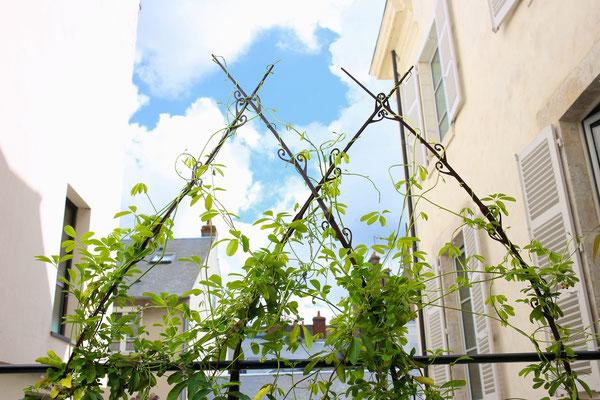 ©Lumaki, structure brise-vue (haut)