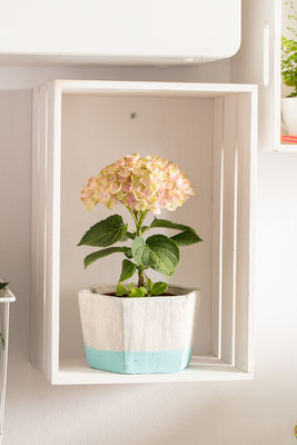 ©Magical Colours Your Home plus petit et compacte.