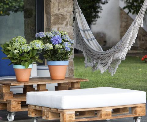 ©Magical Four Seasons, l'hortensia en pot habillent les terrasses et balcons