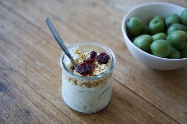 ©Javoy Plantes, Kawaï, recette yaourt gourmand