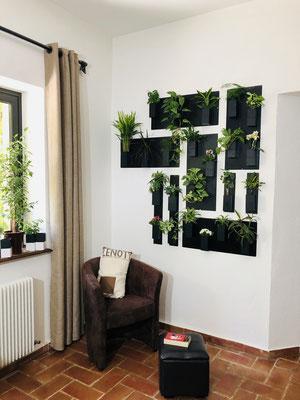 ©Capill'O Concepts, mur végétal de Capill'O Cube noir et blanc