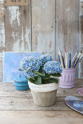©MagicalColourYourHome_hortensias_interieur_diy_composition_florale