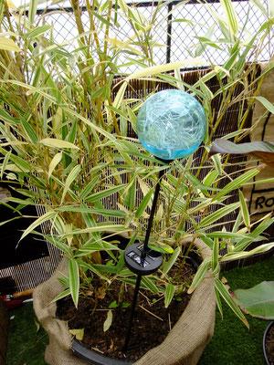 Lumière Ophea Color de Nortene - Archi'Tendances au salon Jardins Jardin ©Archi'Tendances