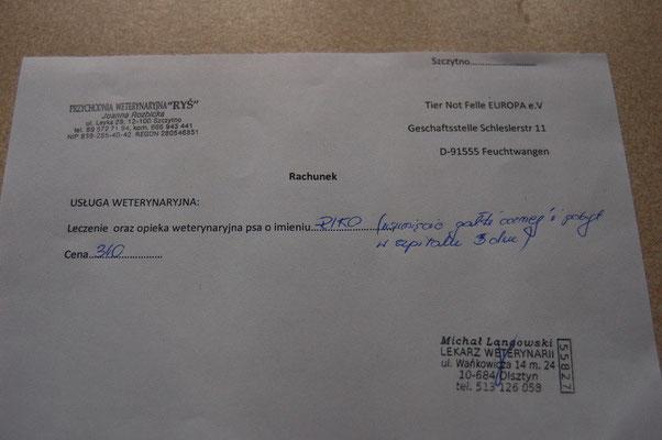 Rg. 4 -  TierKlinik RYS - 340 Zl. -  Rico Augen Op + 3 Tage Klinikaufenthalt