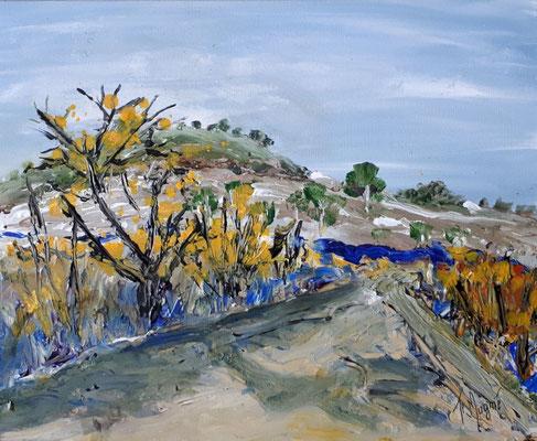 Chemin en Provence, 50 x 61.