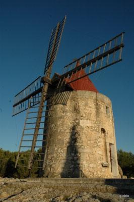 le moulin de Daudet (Fontvielle)