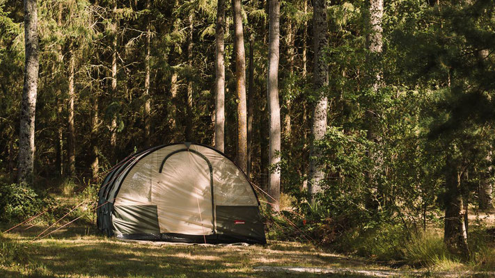 Camping L'heureux hasard in the Loire Valley