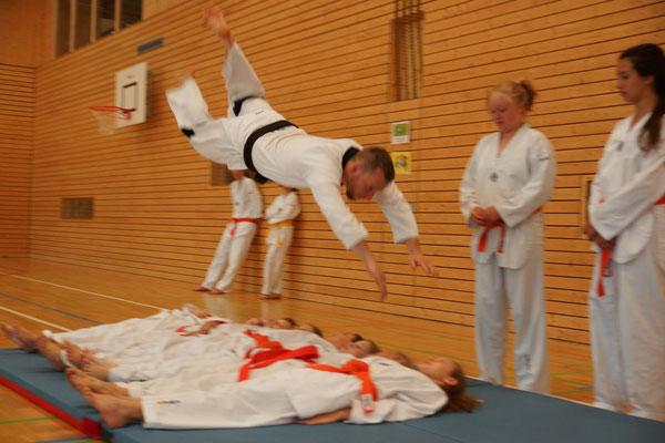 Christopher Lindh, Selbstschutz Lindh, Allkampf-Jitsu, Flugrolle, Egglham