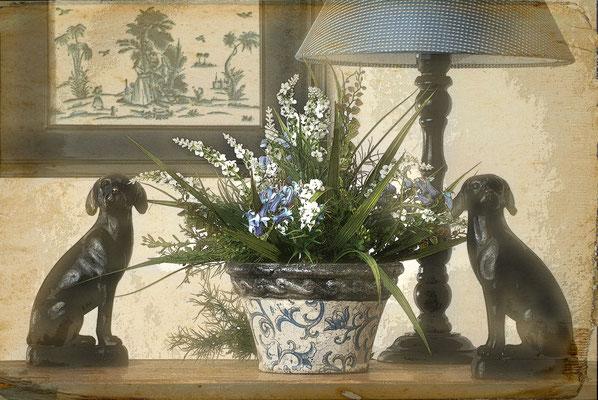 flowers, garden photographer London, Sebastian Kaps, vintage