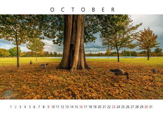 Kensington Gardens, London Calendar 2017, October