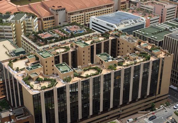 Jardins sur des toits d'immeubles à Monaco