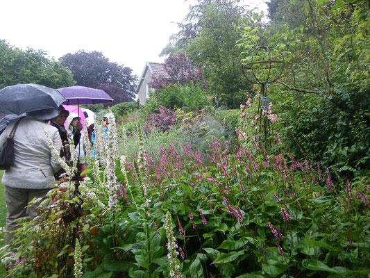 Météo peu clémente pour notre visite au jardin des Airelles (Francorchamps)