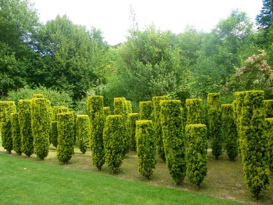 Jardin de Séricourt