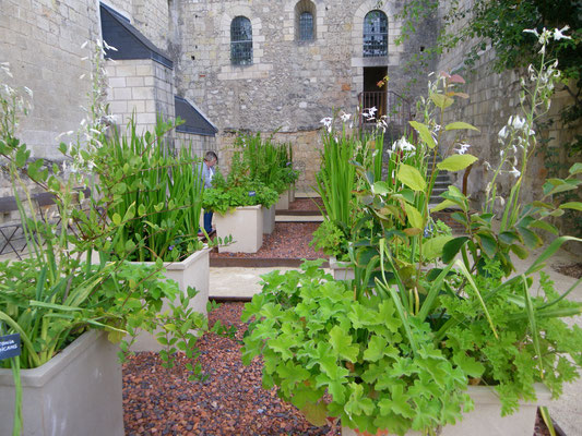 Les jardins du Prieuré de St Cosme