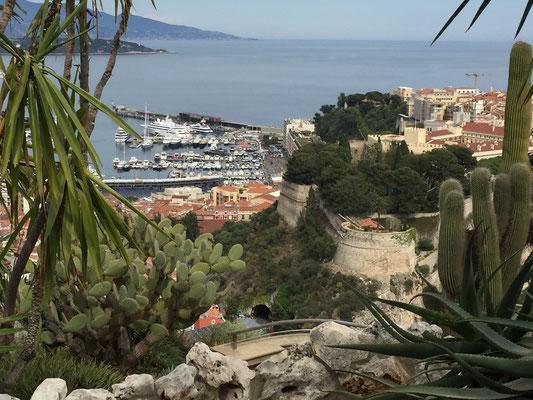 Vue de Monaco depuis le jardin exotique