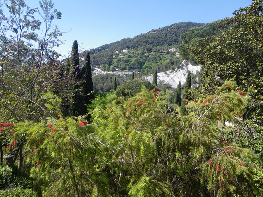 Jardin de la Madone