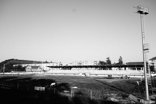 Das Stadion ist mehr Pferdekoppel als Fußballplatz.