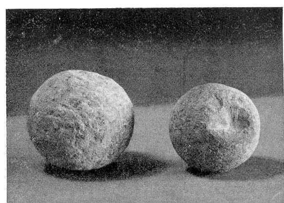 Kogels van steen Blokhuis Leeuwarden