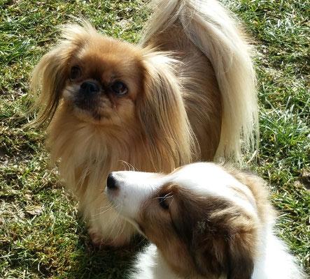Lilly und Anouk