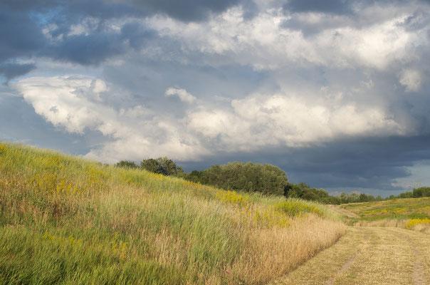 16 Landschaft, Hero Gastmann