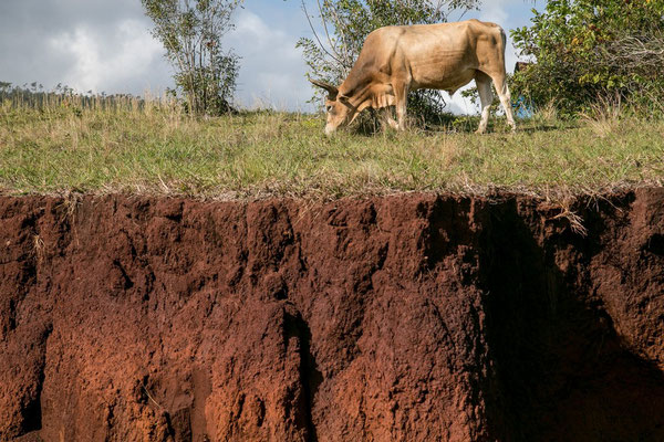 Erosion - Theo Stenert