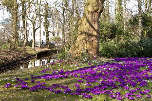 Schlossgarten 1 - Theo Stenert