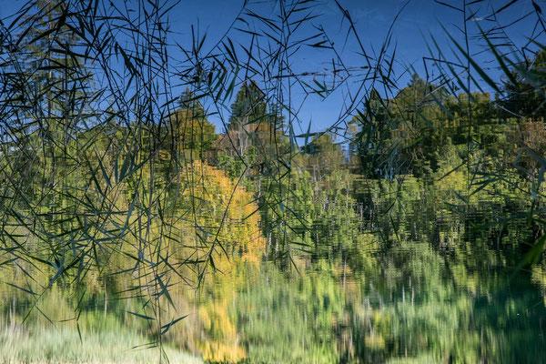 10 Grüne Landschaft, Theo Stenert