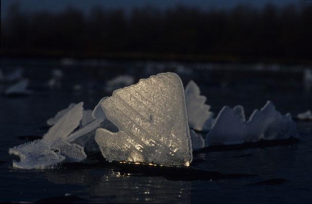 Eisscholle, vom Sturm aufgerichtet - Hans Katzenberger