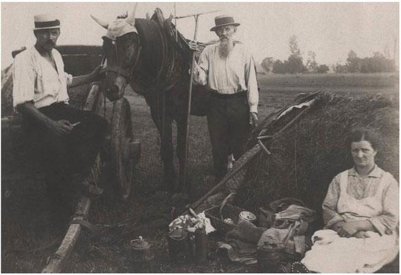 1914 Fenaison de famille STUMPF Joseph et Marie avec leur fils Louis à gauche