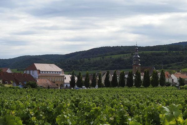 Вид на поселок и горы Пфальцского леса