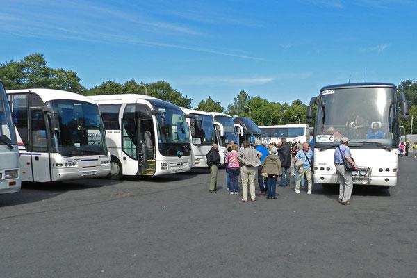 Alle Busparkplätze belegt in Peterhof...
