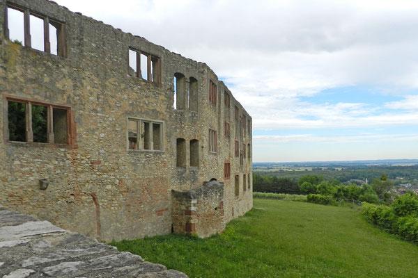 Руины над Оппенхаймом в пасмурный день