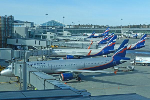 Hochbetrieb am Moskauer Flughafen Scheremetjewo