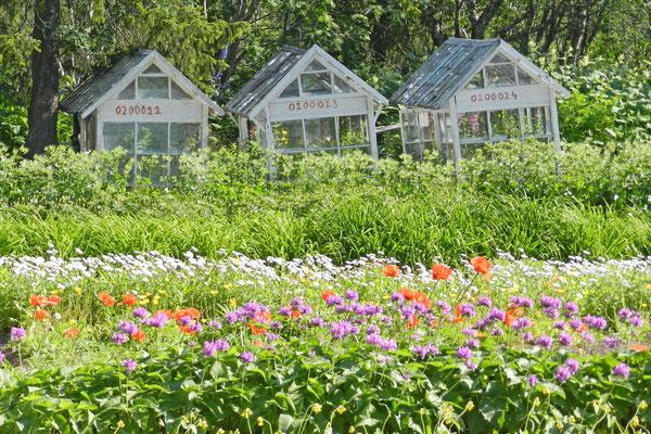 Gewächshäuser auf dem Gelände des Botanischen Gartens von Kirowsk