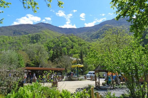 Honigverkaufsstände in den Bergen Abchasiens (Foto: Kalinin)
