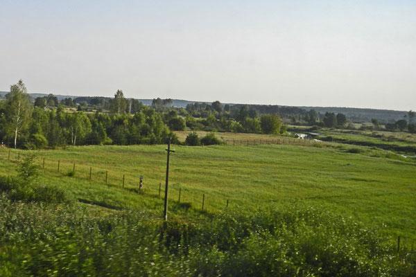 Weißrussische Wiesen vor dem Zugfenster