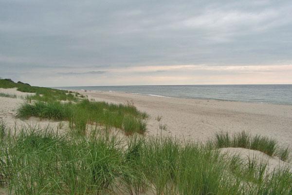 Auf der Ostsee-Seite der Nehrung zieht sich ein endloser Sandstrand die Küste entlang.