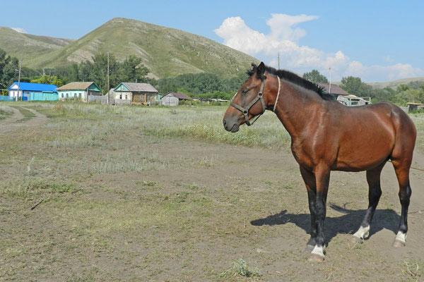 Andrejewka - ein entlegenes Dorf am Rand des Gebiets Orenburg