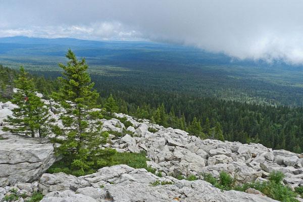Vom Berggipfel sieht man unberührte Taiga bis zum Horizont.