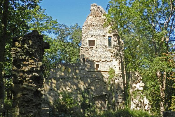 Руины Дизибоденберга