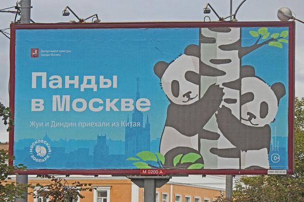 "Straßenreklame ""Pandas in Moskau"""