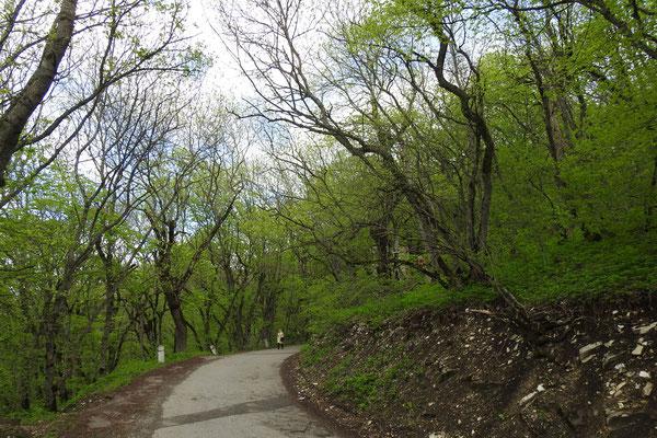 Auf dem Weg zum Gipfel des Maschuk