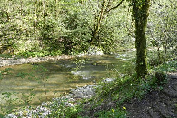 Der Agura-Fluss oberhalb der Wasserfälle