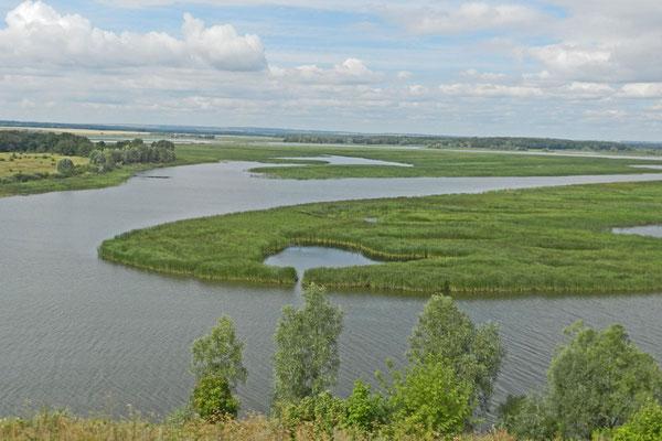 Wiesen, Wald und Flüsse soweit das Auge blickt - Tatarstan vom Busfenster aus.