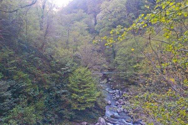 Der Agura-Fluss strömt unten im Tal in Richtung Schwarzes Meer.