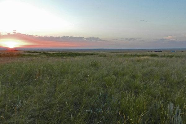 Sonnenuntergang im Orenburger Steppenreservat