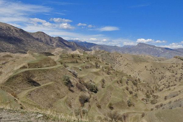 Bergbauern haben einst Terrassen angelegt.