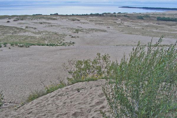 Aussichtsdüne nördlich von Nida mit Blick auf das Haff